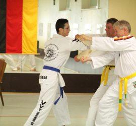 20160619-Taekwondo-Pruefung-040