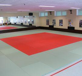 20161016-neue-judomatten